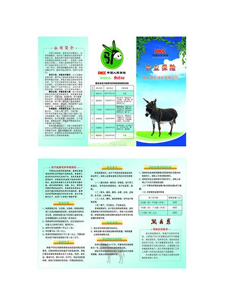平安保险的养驴农业保险的DM宣传单